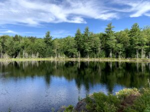 Conservation Work on Duck Pond Trail